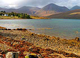 View north from the back garden of Otters Leap